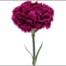 nobbio-violet